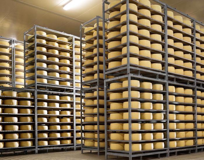 magazzino formaggi